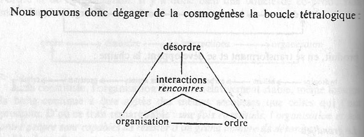 Bloucle de Morin (tradition systemico-cybernétique)
